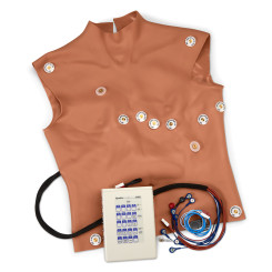 Simulaids® 12-Lead Arrhythmia Simulator with Manikin Overlay - Physio - Medium