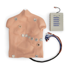 Simulaids® 12-Lead Arrhythmia Simulator with Manikin Overlay - Heartstart - Large